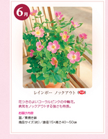 monthly_04_img03.jpg